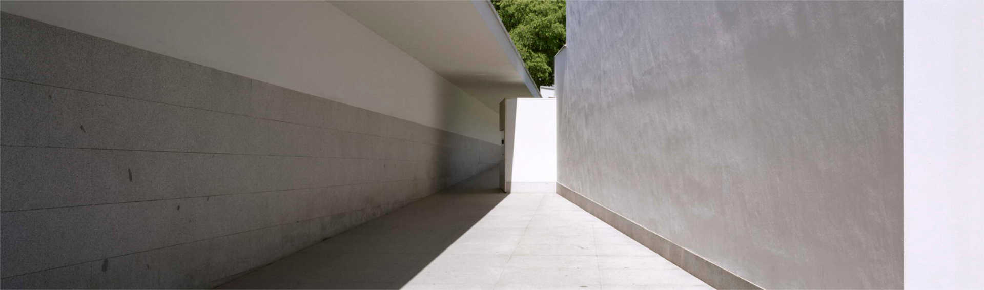 Serralves Foundation - image 6
